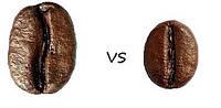 Что лучше: арабика или робуста