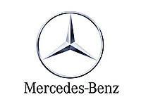 Зимняя накладка Mercedes