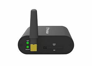 GSM шлюз Yeastar TG100, фото 2