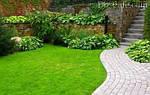 Как создать красивый и ровный газон? (интересные статьи)