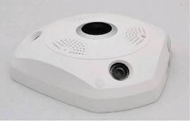 Панорамная IP видеокамера P2