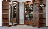 Угловой книжный шкаф 0031