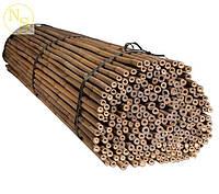 Бамбуковый ствол, опора L 2,1м. диам. 20-22мм.
