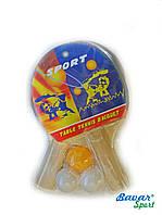 Ракетки для пинг-понга с мячиками