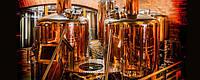 Оборудование для производства пива мини пивоварня пивзавод, фото 1