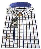 Рубашка мужская в клетку  №12-28  - 50-1095 V3, фото 1