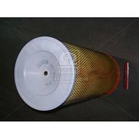Элемент фильт. возд. КРАЗ (9.1.139) Цитрон 6510-1109080
