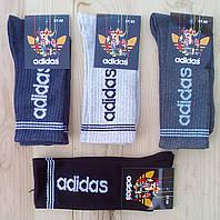 """Носки подросток демисезонные """"Adidas"""" высокая резинка 37-39р НМД-05522"""