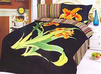 Семейный набор постельного белья LE VELE aliza black , сатин