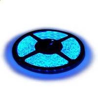 Светодиодная LED лента SMD 5050-60 B синяя негерметичная IP20