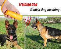 Ультразвуковой портативный отпугиватель собак с фонариком AD-100. (с функцией тренера)! + крона, Хит продаж