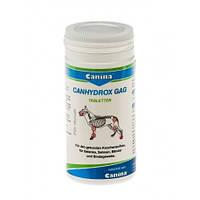 PETVITAL Candydrox GAG (Gag Forte), пищевая добавка, 120 таблеток, 200г