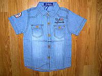 Джинсовые рубашки на мальчика оптом, S&D, 1-5 рр, фото 1