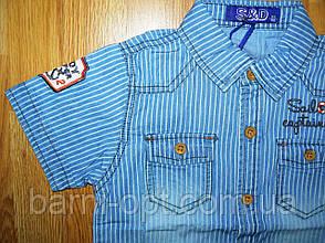 Джинсові сорочки на хлопчика оптом, S&D, 1-5 рр, фото 2