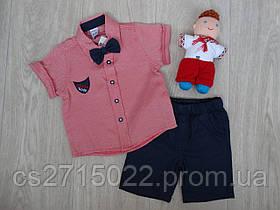 """Набор  """"Juuta Boys"""" для мальчиков рубашка, шорты, бабочка светло-красный/синий р.1-3 года"""