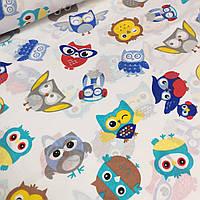 Польский хлопок ткань с разнообразными совами серо-голубого цвета   №548