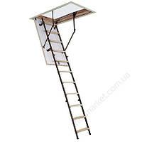 Лестница чердачная Oman Stallux Termo (120x60) H280