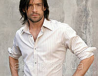 Чистка рубашки мужской