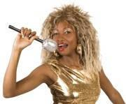 Микрофон карнавальный концертный