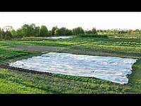 Агроволокно - время начинать сезон посадки