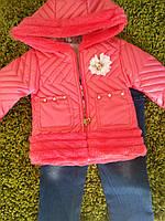 Костюм для девочки демисезонный (куртка, батник,джинсы) 9,12 месяцев