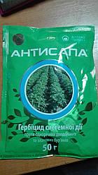 Антисапа 50 г, герб.