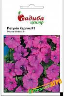"""Семена цветов Петуния гибридная """"Карлик"""" F1, 10 семян, """"Черни"""", Чехия."""