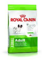 Royal Canin X-Small Adult для взрослых собак миниатюрных пород старше 10 месяцев