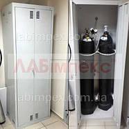 Шкаф лабораторный для хранения газовых баллонов ШБ, Украина, фото 2