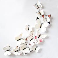 Объемные 3D бабочки на стену (обои) для декора (белые цветные)