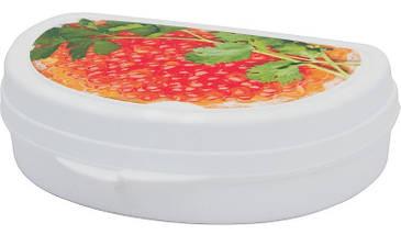 Бутербродница пластиковая (в ассортименте), TM Idea 1201, фото 3
