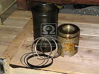 Гильзо-комплект (238Б-1004005) ЯМЗ 238Б (ГП+Кольца) (нирезист.) П/К (пр-во ЯМЗ)