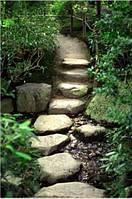 Светящиеся картины Startonight Каменная Лестница Природа Пейзаж Печать на Холсте Декор стен Дизайн