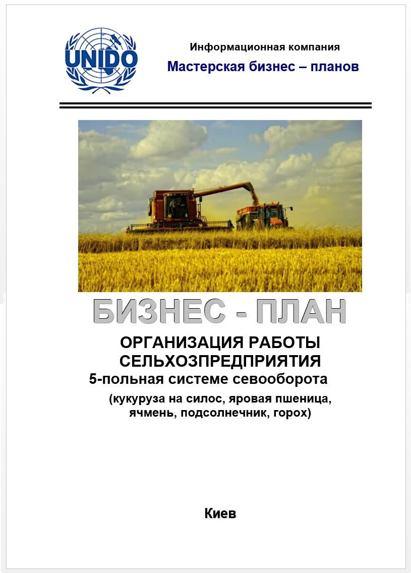 Бизнес план на сельхозпредприятие 16 структура бизнес плана