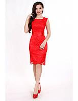 Коктейльное платье-футляр из гипюра Р0506A (р.44-50) красный