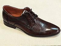 Коричневые туфли мужские на шнурках.  Niko. 39-44.