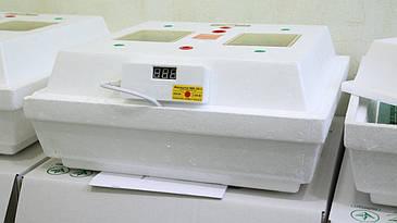 Инкубатор Квочка МИ-30-1
