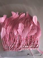 Перьевая тесьма из перьев антенок.Цвет розовый.Цена за 0,5м