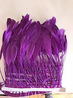 Перьевая тесьма из перьев антенок.Цвет фиолетовый.Цена за 0,5м