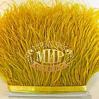 Тесьма страусинная  Цвет Gold  Цена за 0.5м