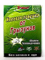 Клеевая ловушка для мышей и насекомых (книжка) 21*32см