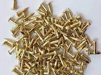 Гвозди 1.5х10мм золото