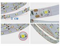 Яркая светодиодная лента, белая, в силиконе! 3528 smd, 300 Led - белая! 5 метров! LED лента!, В наличии