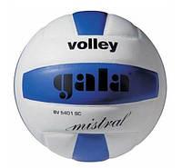 Мяч волейбольный Gala Mistral BV5401