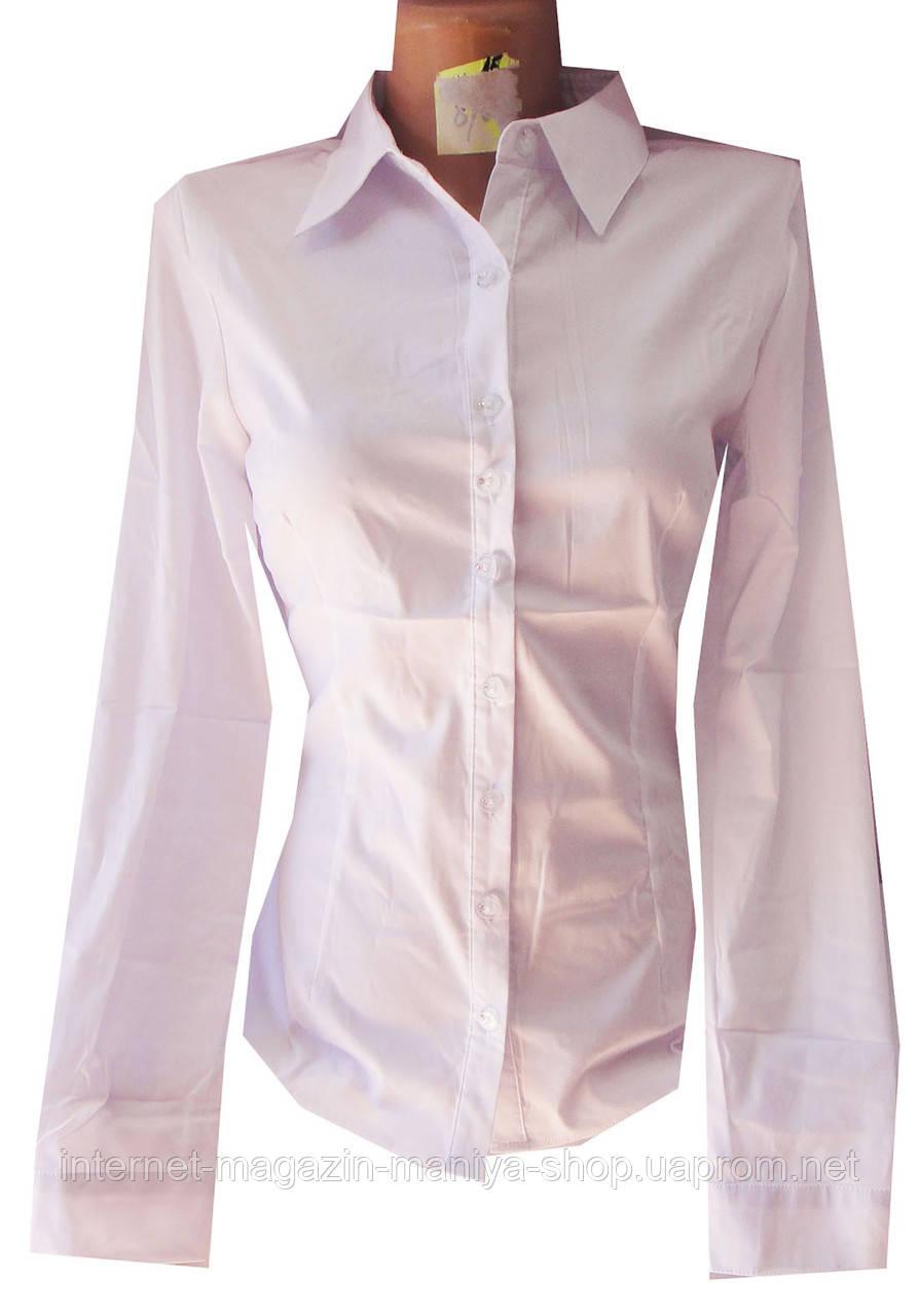 Рубашка женская А1487 однотонная (деми)