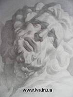 Уроки академического рисунка гипсовой головы