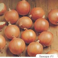 Тамара F1 семена лука