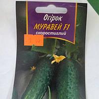 Семена огурцов сорт «Муравей F1» 3гр