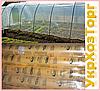 Вернуться к: Тепличная пленка CОЮЗ (Планета Пластик) Тепличная пленка Союз 200 мкм (6м х 50 мп) 24 месяца