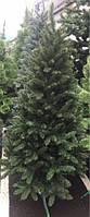 Ель новогодняя, елка 1,2 м  Украина + триног в подарок